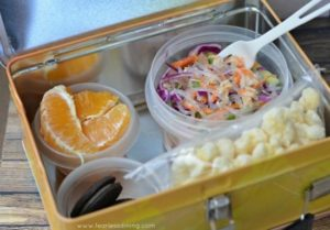 chilled-tuna-noodle-lunchbox-550x383