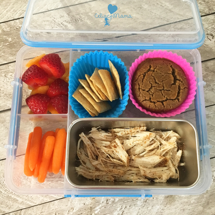 roast-chicken-gluten-free-lunch-box
