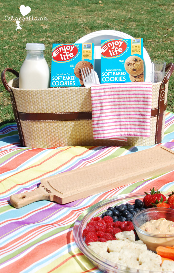 allergy-free-kid-friendly-picnic