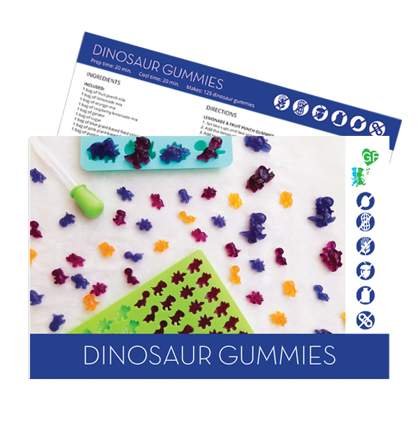 recipe card cover picture of dinosaur gummies kit