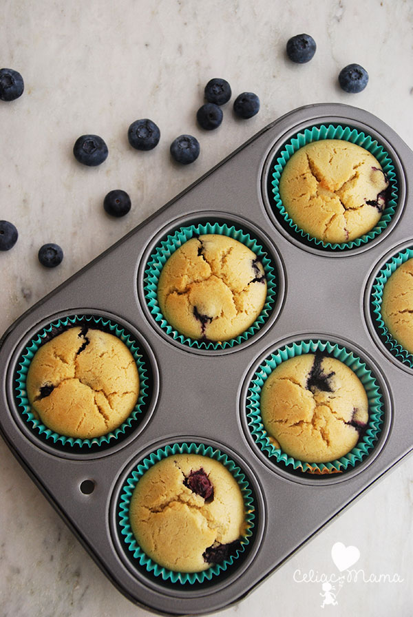 gluten-free-blueberry-muffins