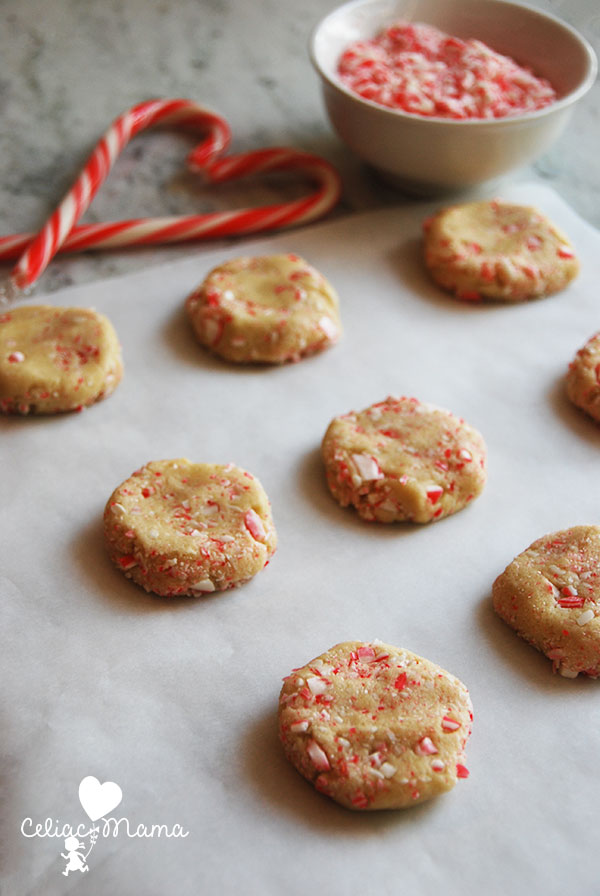 Gluten Free Candy Cane Cookies Celiac Mama