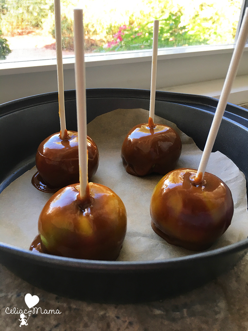 Gluten Free Caramel Apples Recipe Celiac Mama