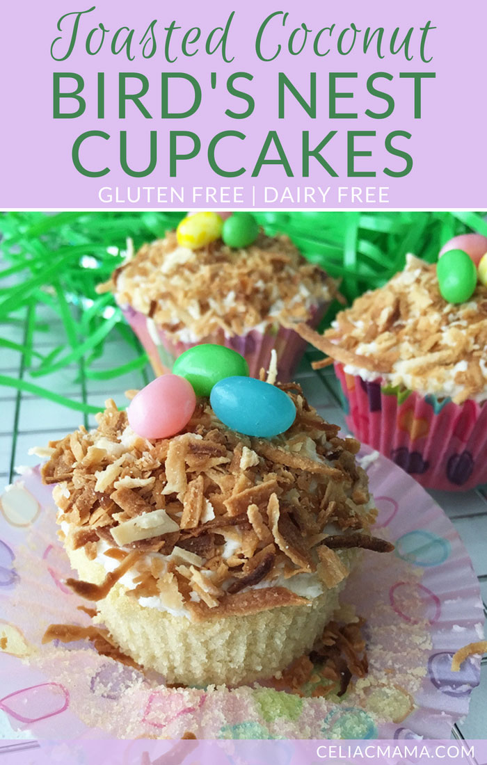 gluten-free-toasted-coconut-birds-nest-cupcakes