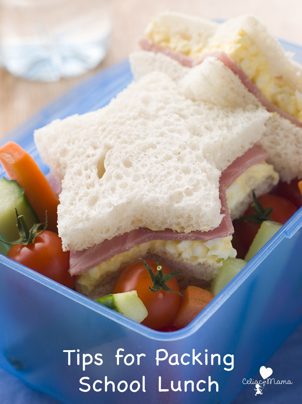 lunch-box-packing-tips
